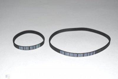 ProTeam Belt