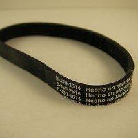 Simplicity Belt (G4)