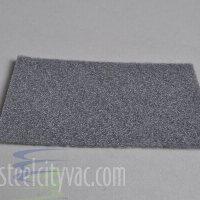 Carpet Pro Filter - PreMotor Filter